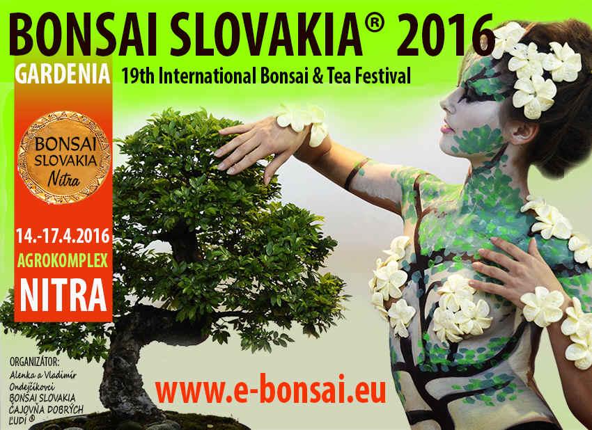 bonsai-slovakia-2016-web
